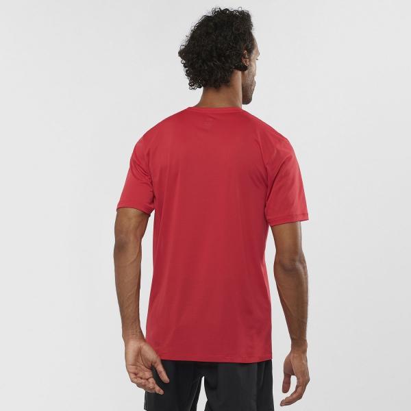 salomon-agile-training-maglietta-running-uomo-goji-berry-lc1282400_B-600×600