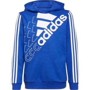 20210629142030_adidas_hoodie_gs2189