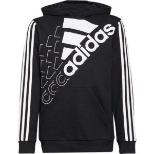 20210712133641_adidas_logo_hoody_gs2187